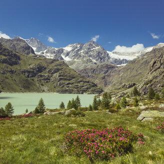 Italy, Lombardy, lake near Chiesa in Valmalenco, Sasso Rosso with glacier - DWIF000521