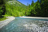 Germany, Bavaria, Allgaeu, Trettach Valley near Oberstdorf, Trettach river - WGF000664