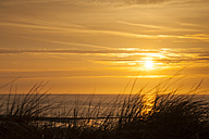 Germany, Lower Saxony, East Frisia, Wangerooge, North Sea Coast at sunset - WIF002209