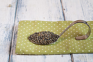 Spoon of Alb Leisa lentils on cloth - SBDF002035