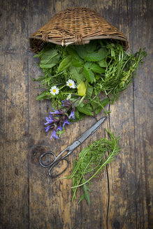 Wickerbasket of different wild herbs and edible flowers - LVF003507