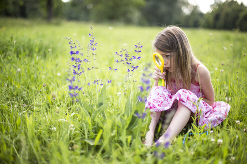 Little girl sitting on a meadow watching flowers with magnifying glass - SARF001921