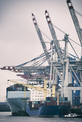 Germany, Hamburg, Port of Hamburg, Container ship unloading - KRP001425