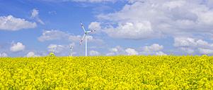 Germany, Baden-Wuerttemberg, Tomerdingen, wind park, rape field - WGF000671