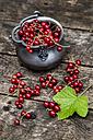 Fresh red currants in zinc bowl - SARF001962