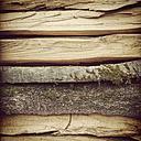 Firewood - GWF004169