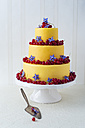 Fancy cake coated with fondant decorated with red currants and borage blossoms - MYF001053