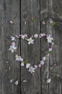 Apple blossoms on weathered wood, heart - CRF002691