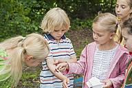 Germany, Children watching caterpillar of peackock butterfly on arm of a boy - MJF001571