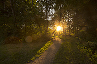 Germany, Bavaria, meadow and path in the evening - SARF001997