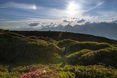 Austria, Tyrol, hiker in mountainscape - MKFF000223