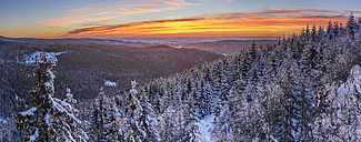 Germany, Saxony-Anhalt, Harz National Park, Landscape in winter at sunset - PVCF000455