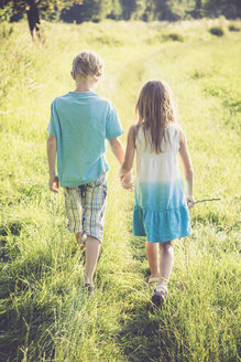 Brother and sister walking hand in hand on a meadow - SARF002021