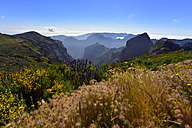 Portugal, Madeira, Pico Ruivo - FDF000119