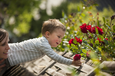 Mother helping his little son picking  flowers - PAF001450