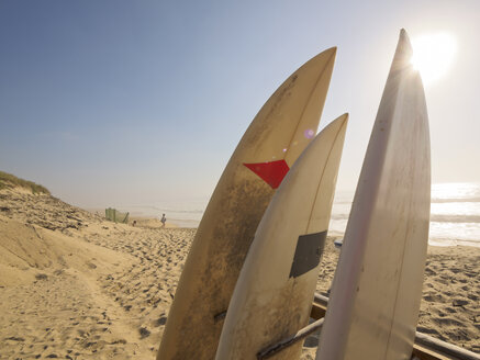 France, Contis-Plage, surfboards on the beach - LAF001423