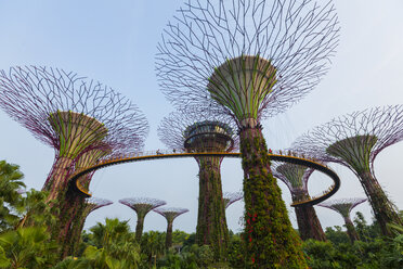Singapore, Gardens by the bay, Supertree Grove - EA000002