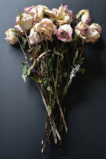 Withered bunch of roses on black ground - AXF000760