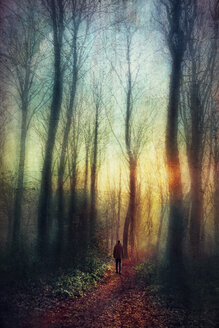 Man on forest path at sunset, digitally manipulated - DWIF000539