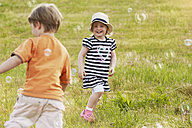 Two children trying to catch soap bubbles on a meadow - STKF001335