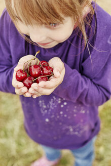 Little girl holding cherries in her hands - STKF001365