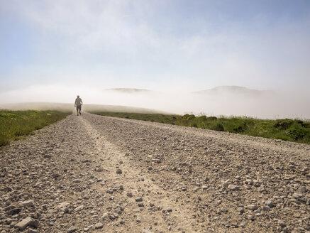 Spain, Pamplona, Iraty, senior man hiking at nature park - LAF001427