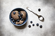 Bowl of vegan blueberry banana ice cream - EVGF001959