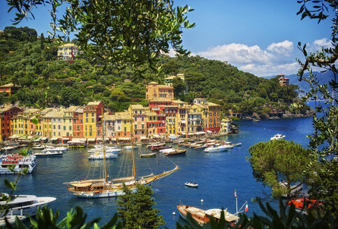 Italy, Liguria, Portofino, boats and row of houses - DIKF000140