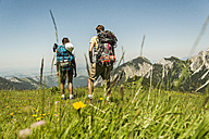 Austria, Tyrol, Tannheimer Tal, young couple standing on alpine meadow looking at view - UUF005057