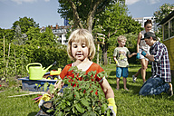 Girl carrying tray with seedlings in garden - RHF000992