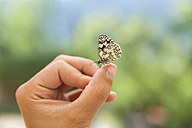 Butterfly on woman's hand - TCF004771