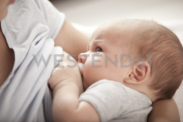 Young woman breast feeding her baby - MFRF000296 - Michelle Fraikin/Westend61