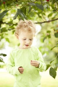 Little girl holding cherry in her hand - MFRF000312