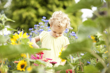 Little girl standing in the garden watering flowers - MFRF000323