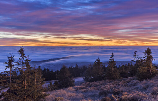 Germany, Saxony-Anhalt, Harz National Park, atmospheric inversion at Brocken in the morning - PVCF000500