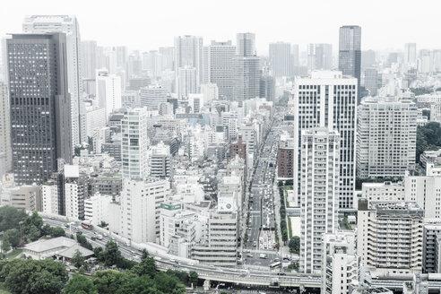 Japan, Tokyo, cityscape with motorway bridge - FLF001163