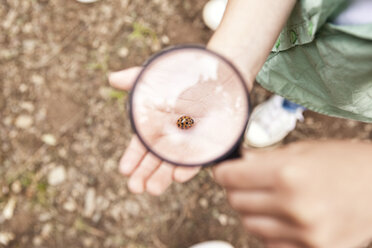Ladybird on girl's hand under magnifying glass - MFRF000276