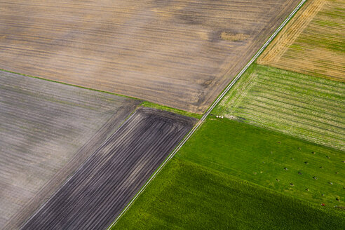 Germany, Bavaria, View of fields, aerial view - PEDF000126
