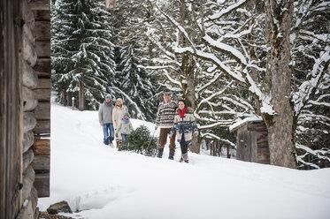 Austria, Altenmarkt-Zauchensee, two couples and two children transporting Christmas tree through winter forest - HHF005380