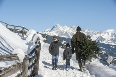 Austria, Altenmarkt-Zauchensee, father with two sons carrying Christmas tree in winter landscape - HHF005386