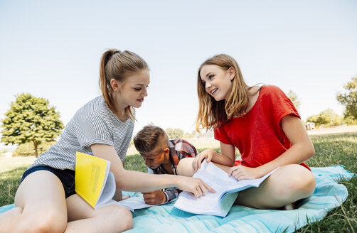 Three teenage friends learning together in meadow - AIF000083