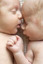 Newborn twins sleeping head to head - SHKF000333