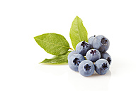 Blueberries with leaves on white ground - CSF026146