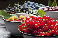 Bowl of red currants and bowls of other berries in the background - CSF026130