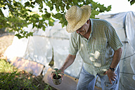 Farmer with potted plant in front of a greenhouse - RAEF000298