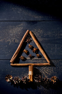 Cinnamon sticks and star anise shaped like a Christmas tree - MAEF010981