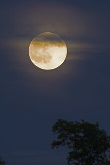 Germany, rise of full moon - UMF000783