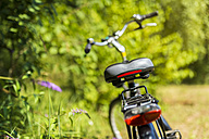 Back view of parked bicycle at forest edge - FRF000310