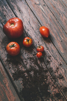 Tomatoes on wooden background - AKNF000010