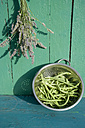 Bunch of lavender and colander with green beans - GISF000142